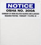 Brady OSHA Compliance Training Posting Board 45673 - English - 754476-45673