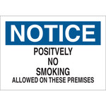 Brady B-302 Polyester Rectangle White No Smoking Sign - 10 in Width x 7 in Height - Laminated - 88388
