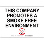 Brady B-302 Polyester Rectangle White No Smoking Sign - 10 in Width x 7 in Height - Laminated - 88910