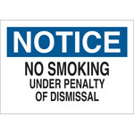 Brady B-302 Polyester Rectangle White No Smoking Sign - 14 in Width x 10 in Height - Laminated - 88387